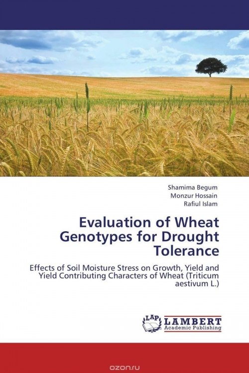 Evaluation of Wheat Genotypes for Drought Tolerance