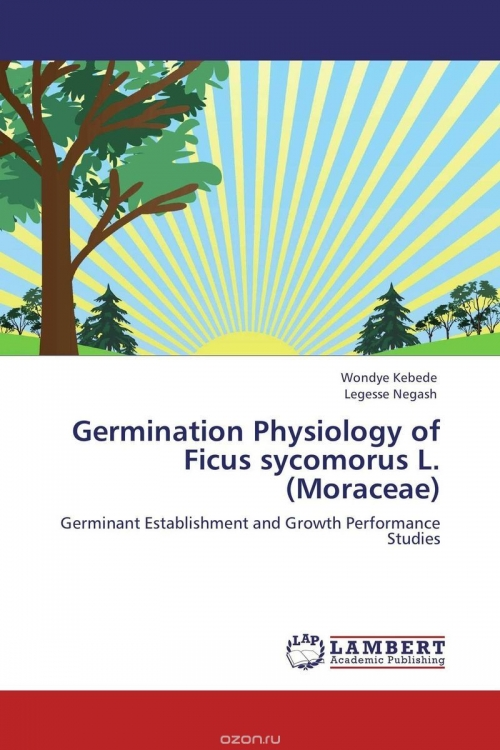 Germination Physiology of Ficus sycomorus L. (Moraceae)