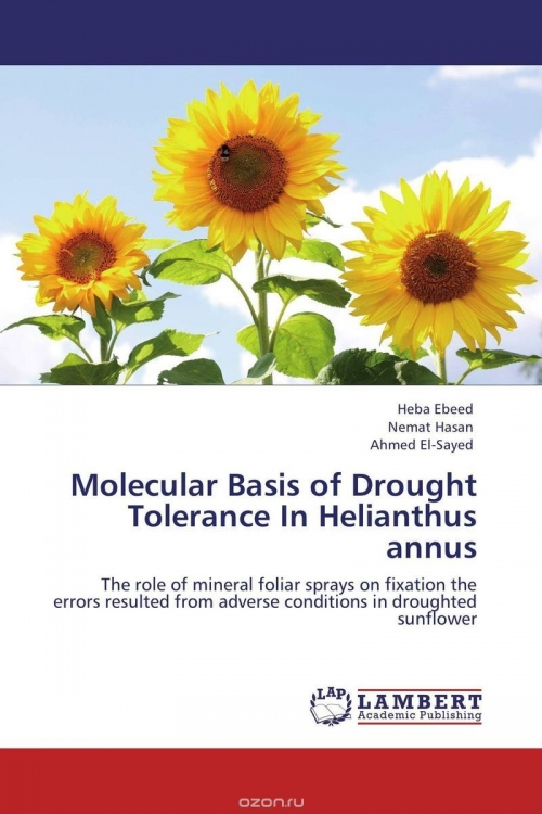 Molecular Basis of Drought Tolerance In Helianthus annus