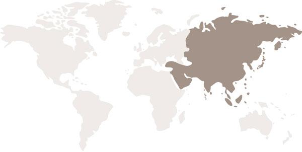 Регион: Южная Азия