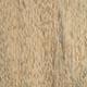 Цейба пятитычинковая, шёлковое дерево