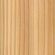 Тетраклинис членистый, сандараковое дерево, алжирская туя