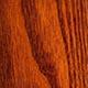 Бундук двудомный, или канадский, кентуккийское кофейное дерево