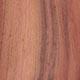 Буркея африканская