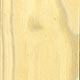 Бересклет карликовый