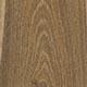 Лабурнум обыкновенный,  лабурнум анагиролистный (ракитник «золотой дождь»)