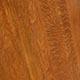 Терпентиновое дерево, или ложная фисташка