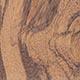 Рапанеа рододендроновидная